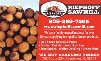 We Buy Standing Timber