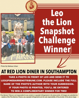 Leo The Lion Snapshot Challenge Winner