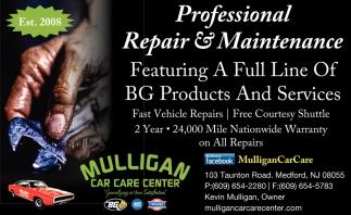 Professional Repair & Maintenance