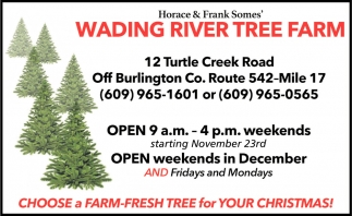 Choose A Farm-Fresh Tree For Your Christmas!