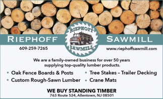 We Buy Standing Timber