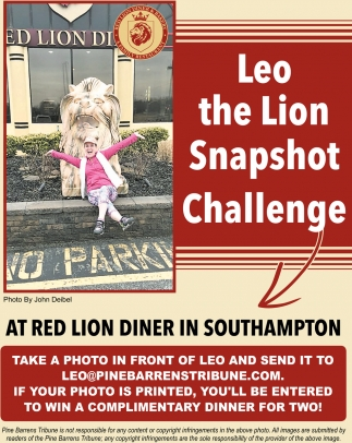 Leo The Lion Snapshot Challenge