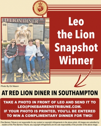 Leo The Lion Snapshot Winner